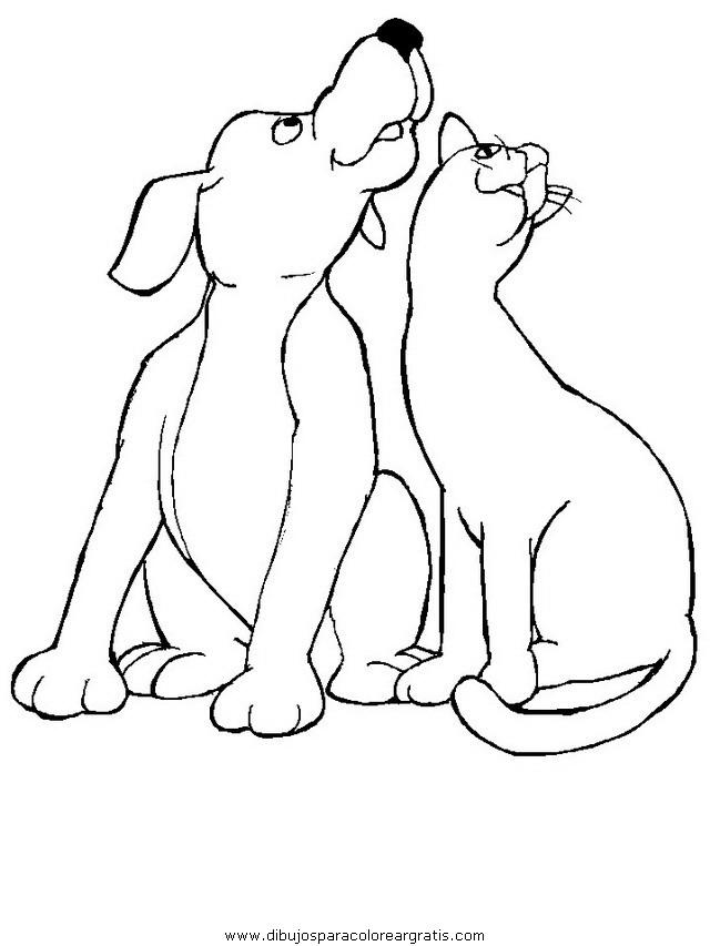 animales/perros/perros_021.JPG