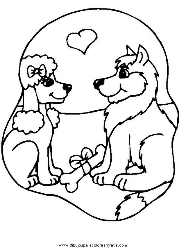 animales/perros/perros_022.JPG