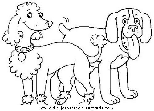 animales/perros/perros_035.JPG