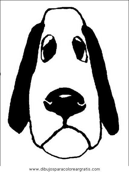 animales/perros/perros_050.JPG