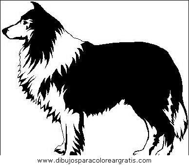 animales/perros/perros_052.JPG