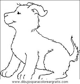 animales/perros/perros_053.JPG