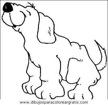 animales/perros/perros_054.JPG