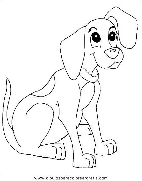 animales/perros/perros_062.JPG