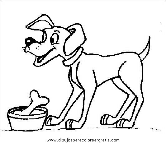 animales/perros/perros_065.JPG