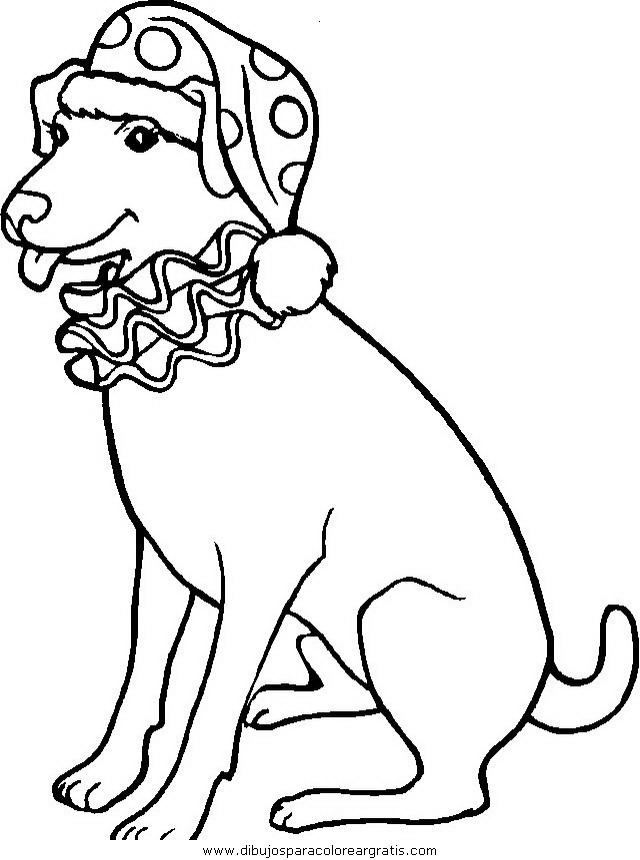 animales/perros/perros_082.JPG