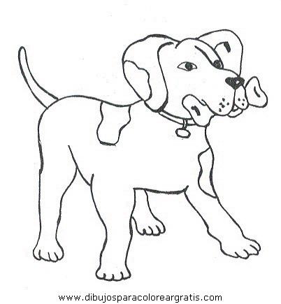 animales/perros/perros_085.JPG