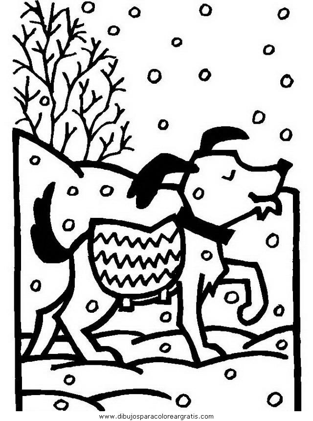 animales/perros/perros_086.JPG