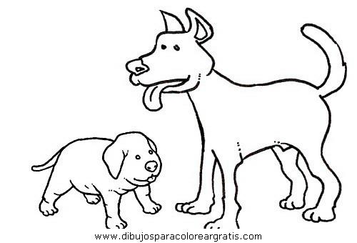 animales/perros/perros_095.JPG