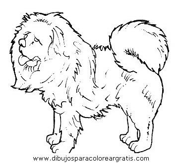 animales/perros/perros_099.JPG