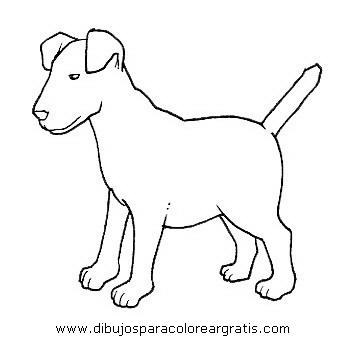 animales/perros/perros_101.JPG