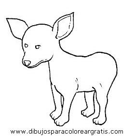 animales/perros/perros_104.JPG