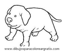animales/perros/perros_105.JPG