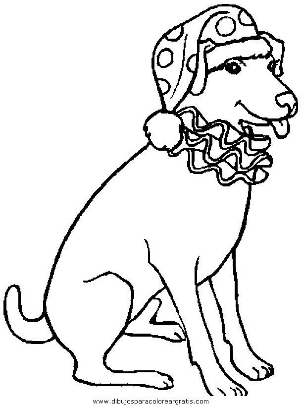 animales/perros/perros_110.JPG