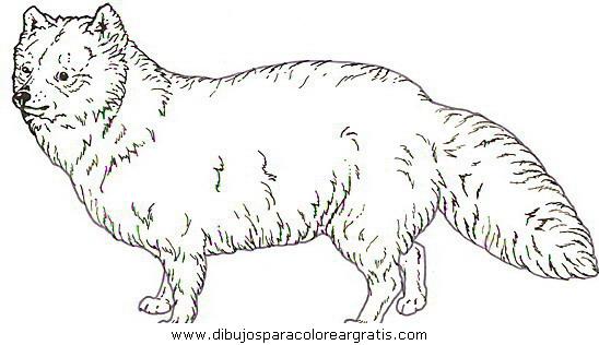 animales/perros/perros_115.JPG