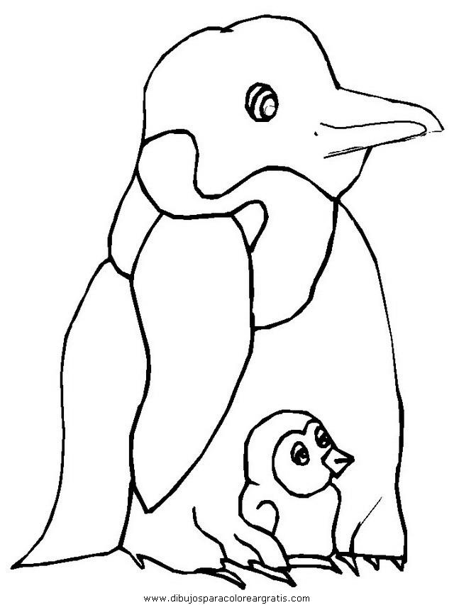 animales/pinguinos/pinguinos_38.JPG