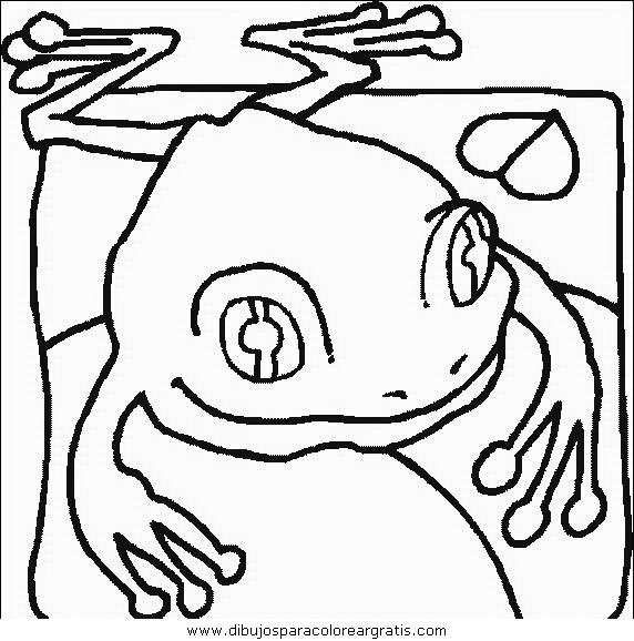 animales/ranas/ranas_45.JPG