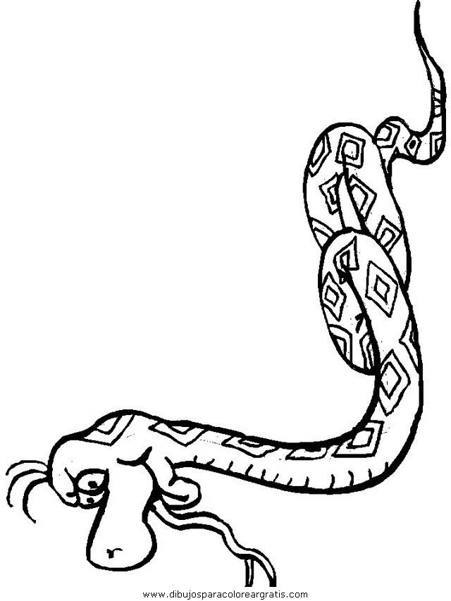 animales/serpientes/serpientes_10.JPG