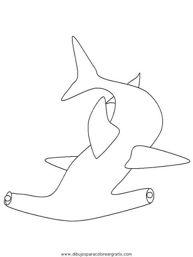animales/tiburones/tiburones_09.JPG