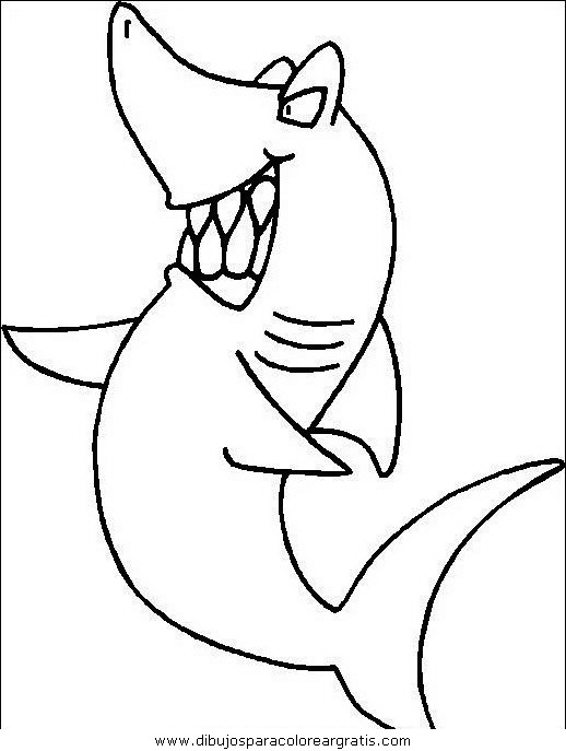animales/tiburones/tiburones_13.JPG