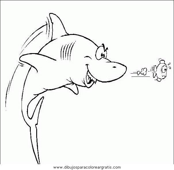 animales/tiburones/tiburones_16.JPG