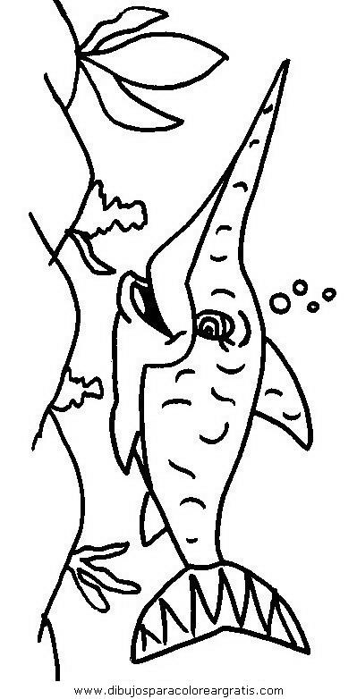 animales/tiburones/tiburones_20.JPG
