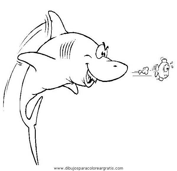 animales/tiburones/tiburones_25.JPG