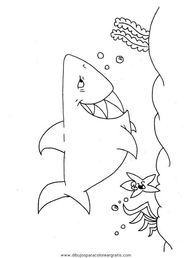 animales/tiburones/tiburones_32.JPG