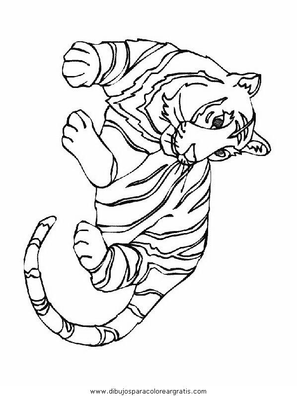 animales/tigres/tigres_03.JPG