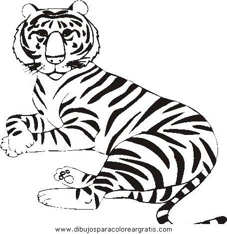 animales/tigres/tigres_14.JPG