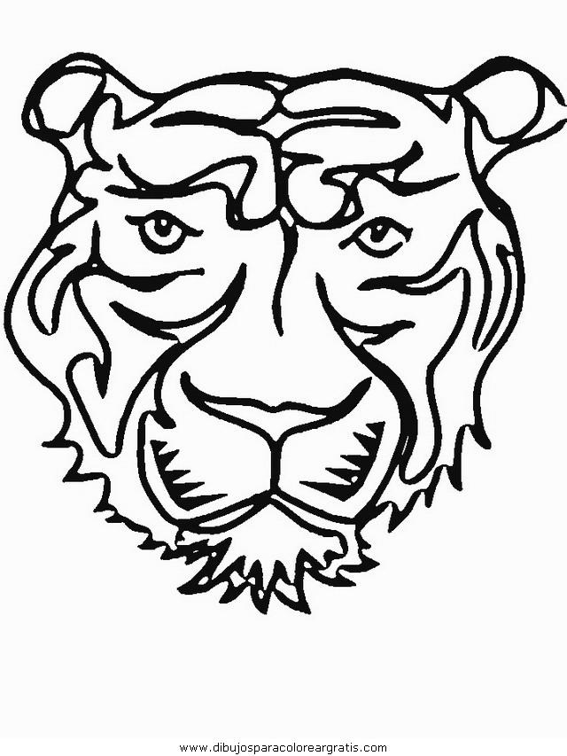 animales/tigres/tigres_25.JPG