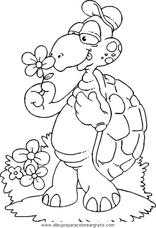 animales/tortugas/tortugas_07.JPG