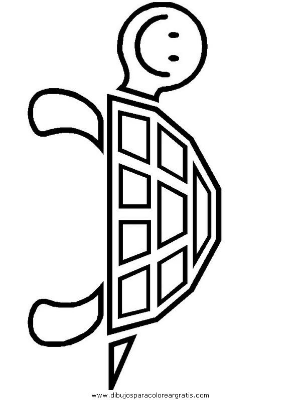 animales/tortugas/tortugas_19.JPG