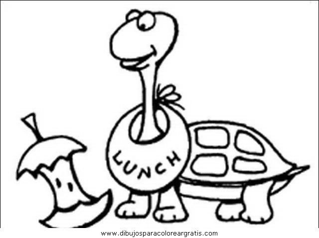animales/tortugas/tortugas_40.JPG