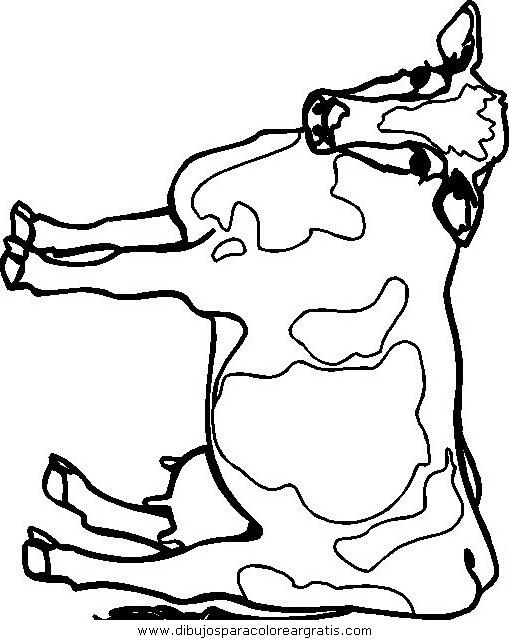 animales/vacas/vacas_19.JPG