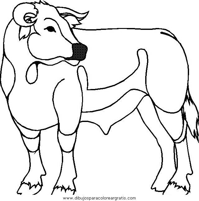 animales/vacas/vacas_21.JPG