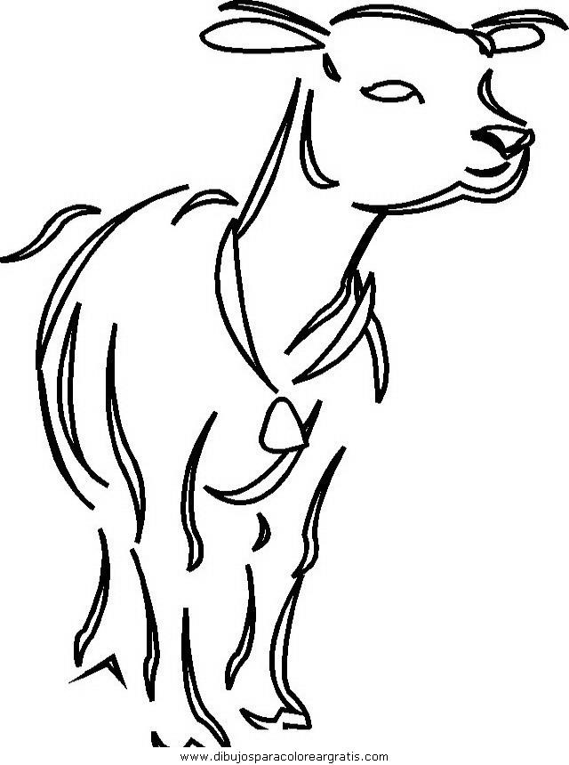 animales/vacas/vacas_36.JPG