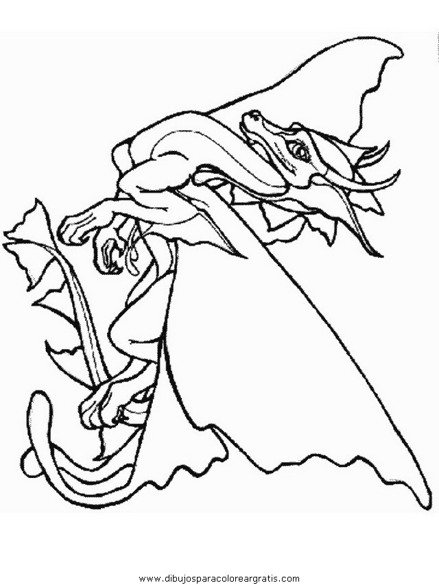 fantasia/dragones/dragones_21.JPG