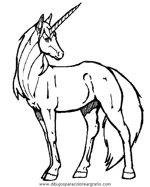 fantasia/unicornios/unicornios_018.JPG