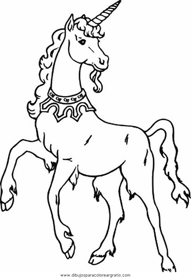 fantasia/unicornios/unicornios_037.JPG