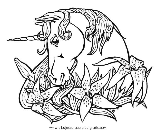 fantasia/unicornios/unicornios_059.JPG