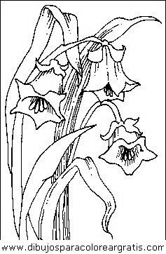 naturaleza/flores/flores_012.JPG