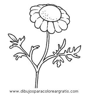 naturaleza/flores/flores_017.JPG