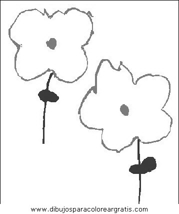 naturaleza/flores/flores_033.JPG