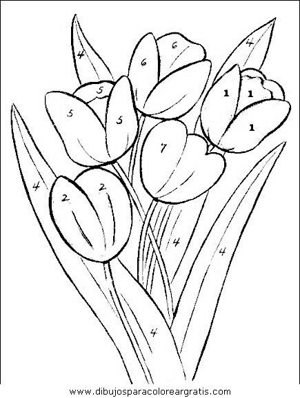 naturaleza/flores/flores_059.JPG