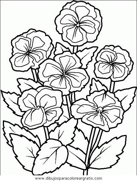 naturaleza/flores/flores_068.JPG
