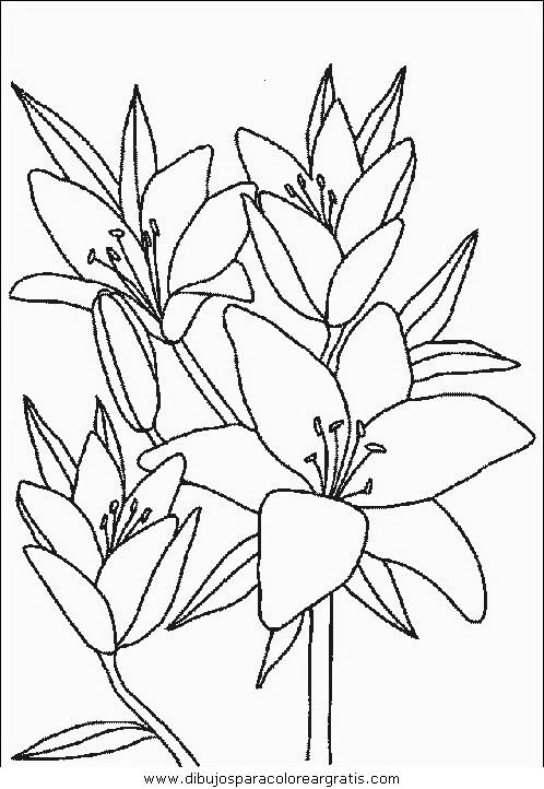 naturaleza/flores/flores_087.JPG