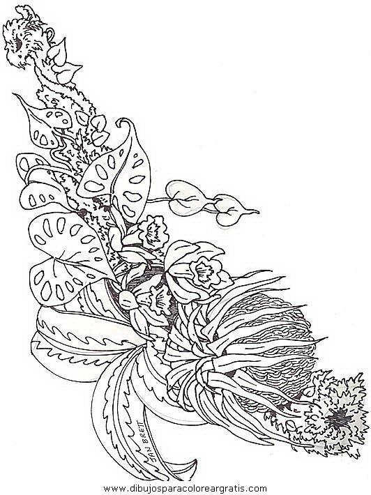 naturaleza/flores/flores_091.JPG