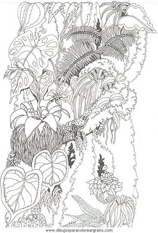 naturaleza/flores/flores_097.JPG