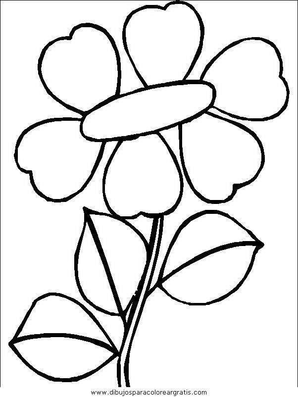 naturaleza/flores/flores_100.JPG